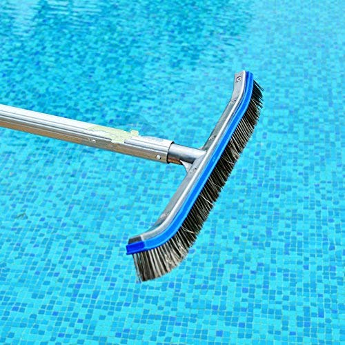 Best Pool Brushes