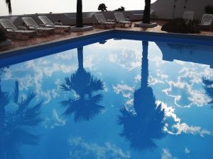 prefab pool with trees reflecting on the surface